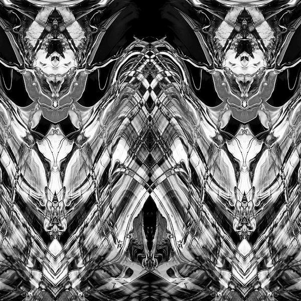 BLACK & WHITE CURIOSITY  van Pia Schneider