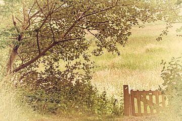 Kunst landschap van Irene Lommers