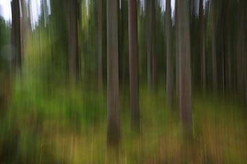 Abstrakte Waldstimmung von Heike Hultsch