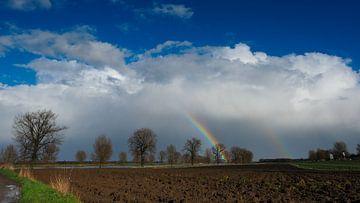Regenboog van Lex Schulte