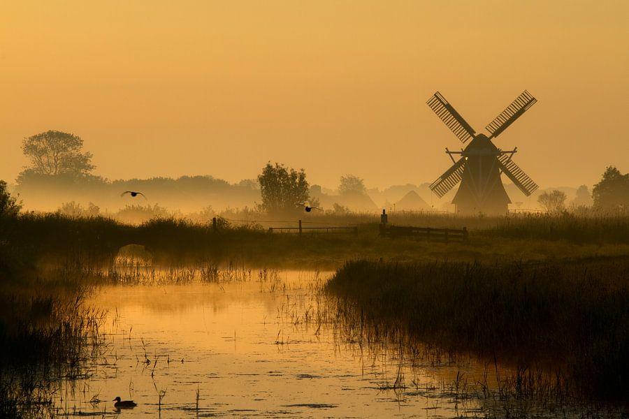 Nederlands poldermolen in het gouden licht van de vroege ochtend