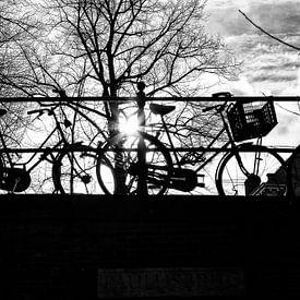 Tegenlicht in Utrecht: Fietsen op een brug over de Utrechtse Nieuwegracht sur De Utrechtse Grachten