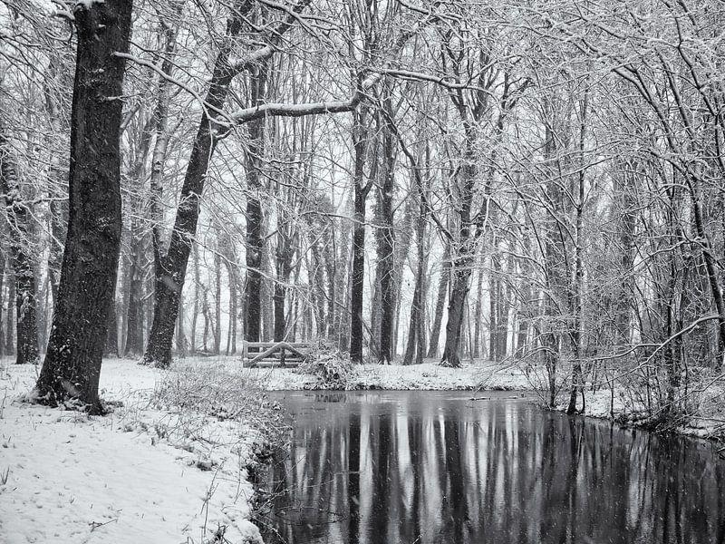 Weerspiegeling besneeuwde bomen van Paul Beentjes