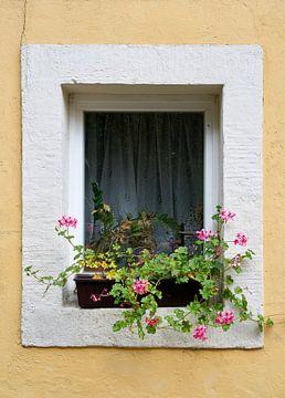 Fenster eines Hauses im Ort Rathen im Elbsansteingebirge von Heiko Kueverling