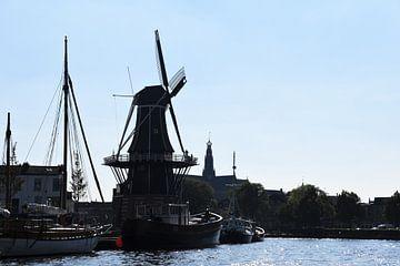 Haarlem langs het Spaarne von Susan Dekker