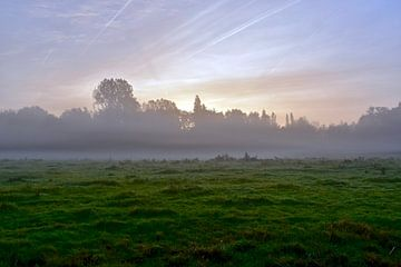 Natuurschoon in de mist