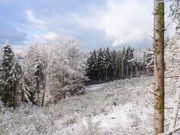 Wintertag von Picsall Photography