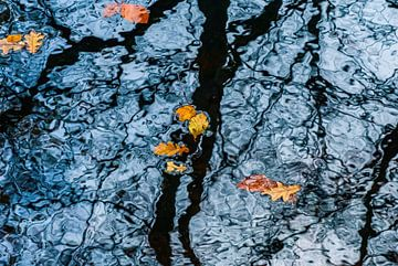 Schwimmendes Herbstlaub von Bep van Pelt- Verkuil