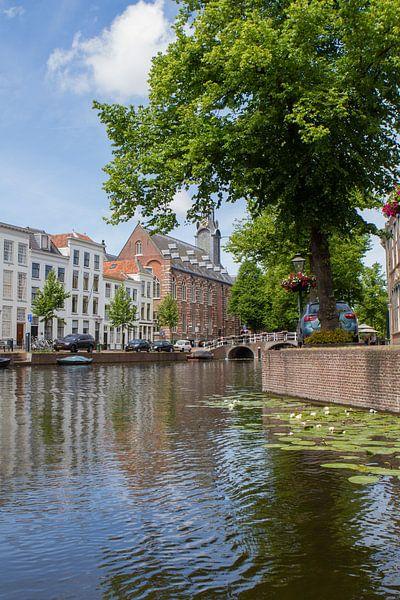 Academiegebouw van de Universiteit Leiden, Rapenburg  van Leanne lovink
