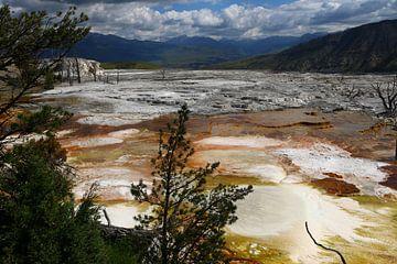 Mammoth Hot Springs von Christiane Schulze