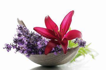 Lavendel Blüten und Lilien Blumen Stillleben von Tanja Riedel