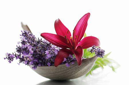 Lavendel Blüten und Lilien Blumen Stillleben
