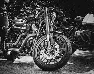 Harley Sportster Porträt