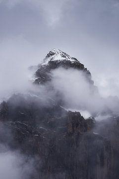 Alpenmassief uit het Nationaal Park van de Ecrins van Yannick Lefevre