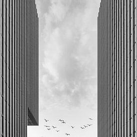 Pointe du port Dusseldorf noir et blanc sur Michael Valjak