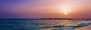 Gasparilla Island Sunset | Panorama van Melanie Viola