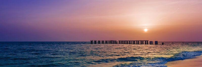 Gasparilla Island Sunset   Panorama van Melanie Viola