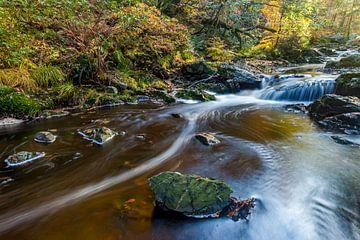 Autumn River van Harold van den Berge
