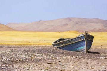 Gestrandetes Boot von Andrew van der Beek