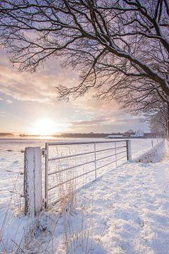 Winters Nederland van Saskia Jans