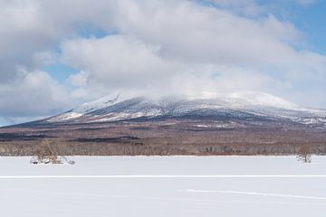 Onuma Quasi National Park tijdens de winter van Mickéle Godderis