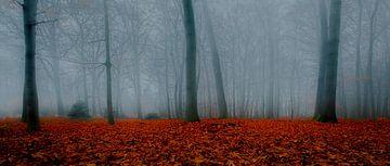 Bos in de mist van Remko Ongersma