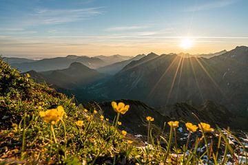 Zonsopgang in de Allgäuer Alpen van Leo Schindzielorz
