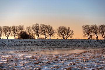 Winterse zonsopkomst tussen de sneeuw van Percy's fotografie