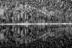 Spiegelung am Eibsee