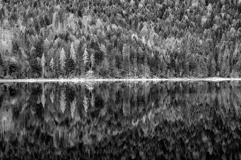Spiegelung am Eibsee von Andreas Müller