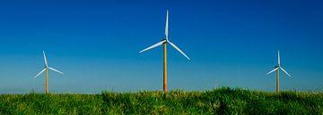 Windkrachtig Flevoland van Sven Wildschut