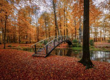Herbstliche Brücke von Mario Visser
