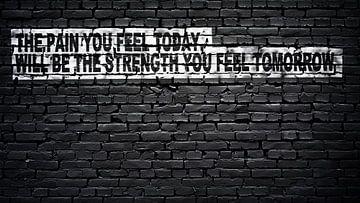 De pijn die je vandaag voelt, zal de kracht zijn die je morgen voelt... van Günter Albers