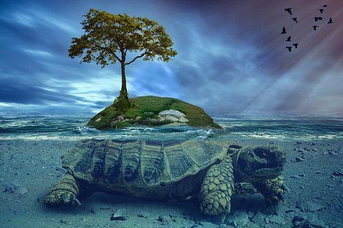 surreal eiland