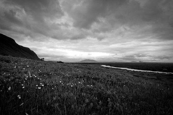 Vergezicht in IJsland van Jasper Hovenga