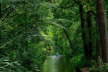 Kajak op een kanaal in het Spreewald van Tilo Grellmann | Photography