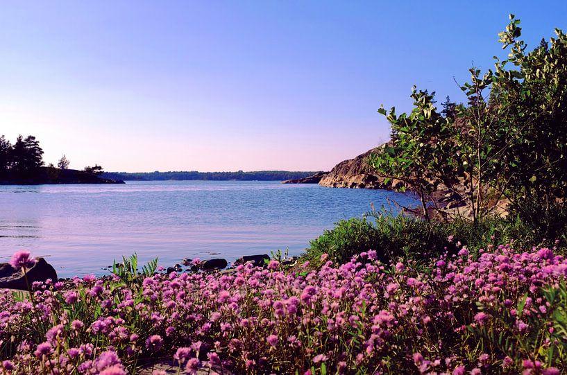 Soirée dans une baie près des îles finlandaises en été, Helsinki sur Roger VDB