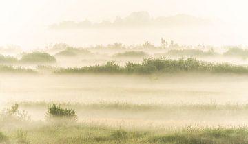 Nationaal Park de Oude Venen, Friesland van Domenique van der Horst