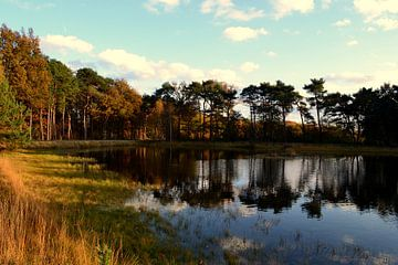 Herfst landschap van Anouk Hemmink