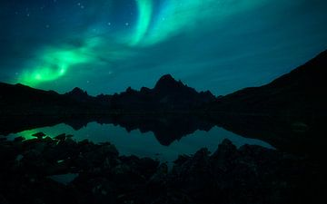 Nordlichter im Yukon, Kanada von Tomas van der Weijden