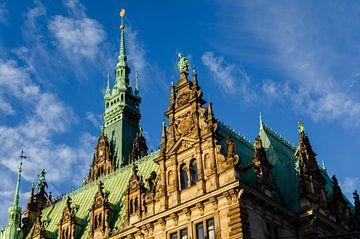 Hamburg Rathaus Fassade und Dach von Dieter Walther