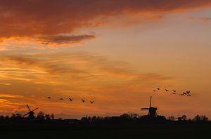 Typisch Nederlandse Zonsondergang