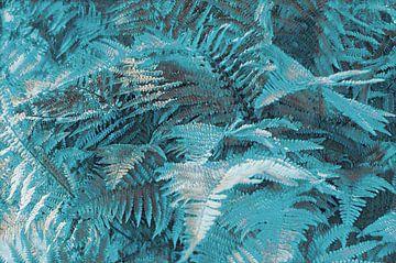 Varenbladeren von Diana Mets