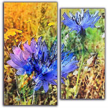 blauwe korenbloemen in 2 delen van Joke te Grotenhuis