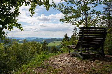Sauerland, Winterberg, Deutschland von Alexander Ludwig