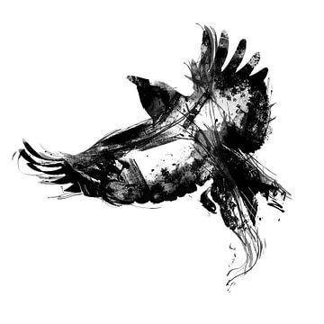 Bird van Teis Albers