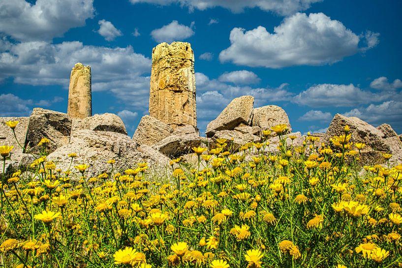 Gele voorjaarsbloemen voor een ruïne van een Griekse tempel van Rietje Bulthuis
