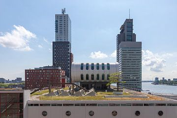 Het groene dak van Las Palmas in Rotterdam van MS Fotografie | Marc van der Stelt