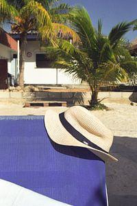 Tag am Strand Curacao von Lynn van Gijzel