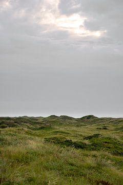 Dänische Dünen von Twan van Vugt